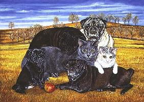 Hocking County Pug-Cats, 1995