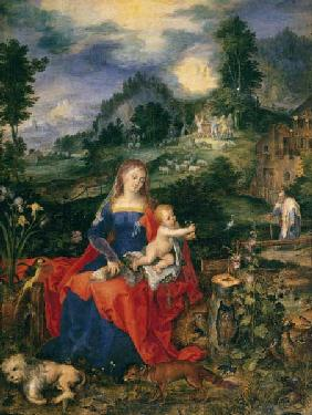 Mary with many animals , Brueghel