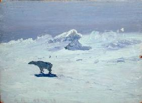 A Polar Bear Hunting in Moonlit Night