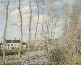Sisley, Alfred : Canal du Loing
