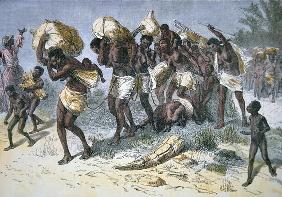 A captured slave gang of Coimbra, a Portuguese mulatto slaver of Bihe, Angola (coloured engraving)