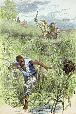 Hunting an escaped slave with dogs (coloured engraving)