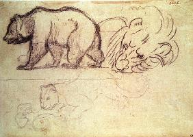 A bear walking, the head of a lion and a leopard attacking an animal