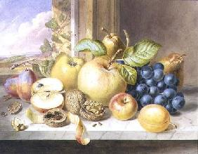 Withers Augusta Innes - A Still Life of Apples, Grapes, Pears, Plums and Walnuts on a Window Ledge
