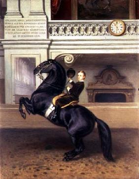 Crown Prince Rudolph of Austria (1858-89) on horseback in the Winter Riding School of the Hofburg, V