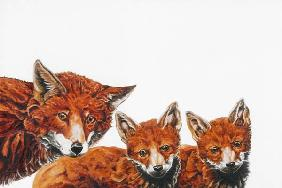 Meet the Foxes 2