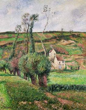 The Cabbage Slopes, Pontoise