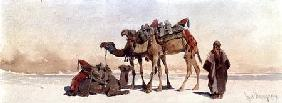 Resting with Three Camels in the Desert