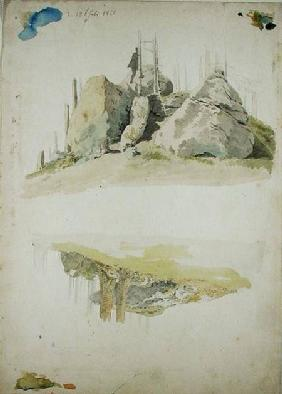 Rock and Tree: Two Studies
