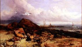 Shore Scene with Fishing Boat and Terns