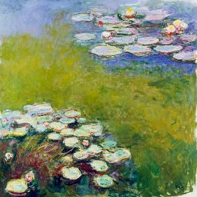 Waterlilies, Harmony in Blue