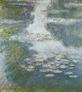 Waterlilies, Nympheas
