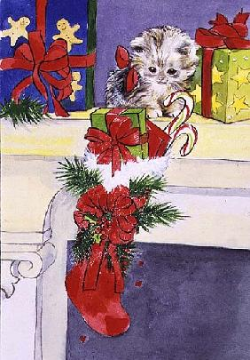 The Kitten and the Christmas Stocking