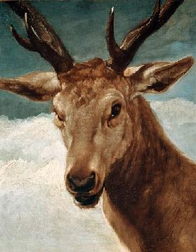 Velázquez / Head of a Stag