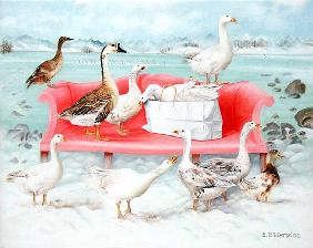 Geese on Pink Sofa, 2000 (acrylic on canvas)