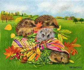 Hedgehogs Inside Scarf, 2000 (acrylic on canvas)