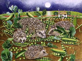 Hedgehogs with Peas beside a Poppy field at night, 1994 (acrylic)