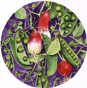 Peas with three Radishes, 1995 (acrylic)
