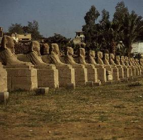Avenue of Sphinxes, added by Nectanebo I (380-362 BC) Late Period