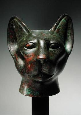 Head of a cat, Late Period