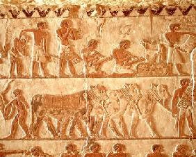 Painted relief depicting the posting of taxes and a group of cattle, Old Kingdom