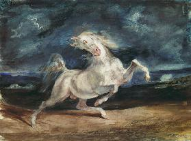 Horse Frightened by Lightning