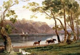 River landscape with barge horses