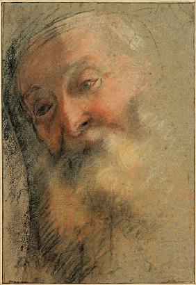 Head of an Old Bearded Man