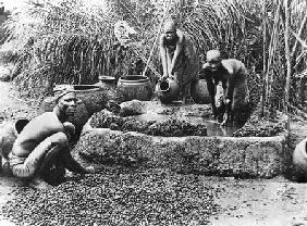 Photographer French - Making palm oil in Dahomey