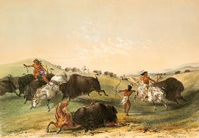 Buffalo Hunt, plate 7 from Catlin's North American Indian Collection, engraved by McGahey, Day and H