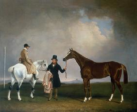 Mr Sadler's 'Decisive' held by his Trainer with the jockey John Day Jnr., Stockbridge Racecourse