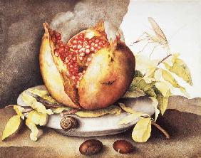 Pomegranate with Chestnuts