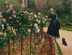 Roses in the Garden at Petit Gennevilliers
