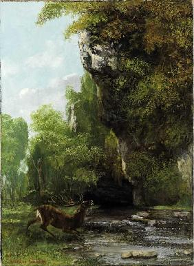 Courbet, Gustave : Hirsch in Bedr�ngnis