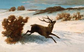 Courbet, Gustave : Deer Running in the Snow