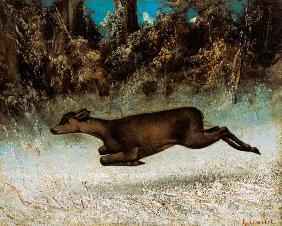 Courbet, Gustave : Jumping Deer