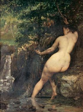 Courbet, Gustave : La source