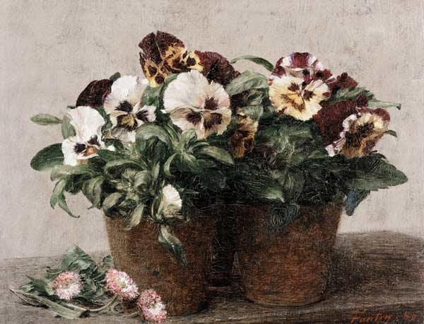 Still Life of Pansies and Daisies