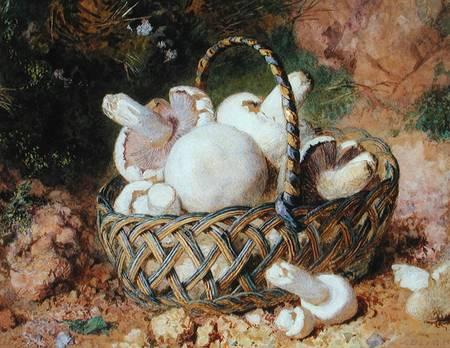 http://www.repro-tableaux.com/kunst/jabez_bligh/basket_mushrooms_hi.jpg