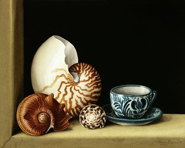 Still life with Nautilus, 1998 (w/c on paper)