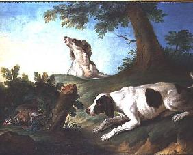 Spaniels putting up a partridge