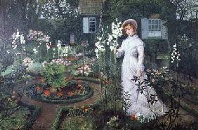 The Rector's Garden, Queen of the Lilies