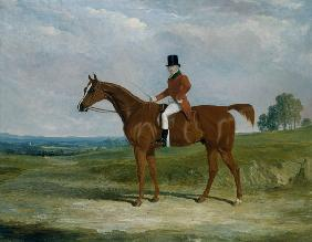 Sir Hugh Hamilton Mortimer, Master of the Old Surrey Foxhounds, on a chestnut hunter in an extensive