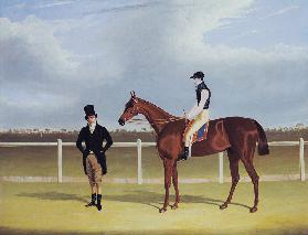 The Hon. E. Petre's 'Rowton', winner of the St. Leger with Bill Scott up