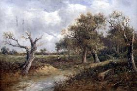 Landscape with Dying Tree