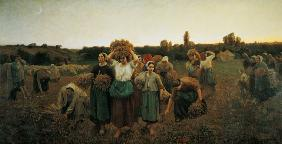 Breton, Jules : Calling in the Gleaners