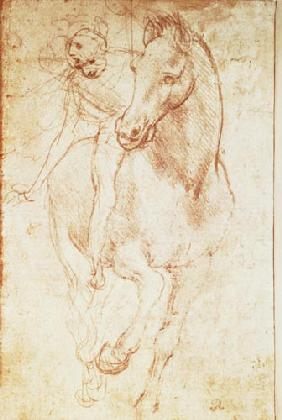 Horse and Rider (silverpoint)