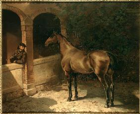 Horse and smoker