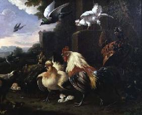 A cockerel and other fowl in a landscape