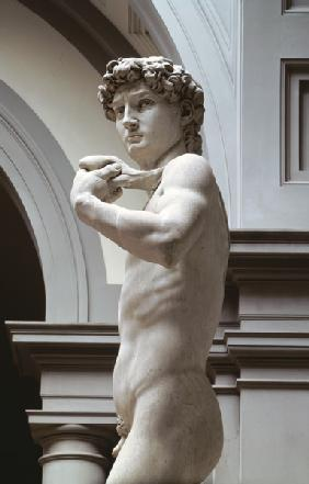David, detail of upper section by Michelangelo Buonarroti (1475-1564)